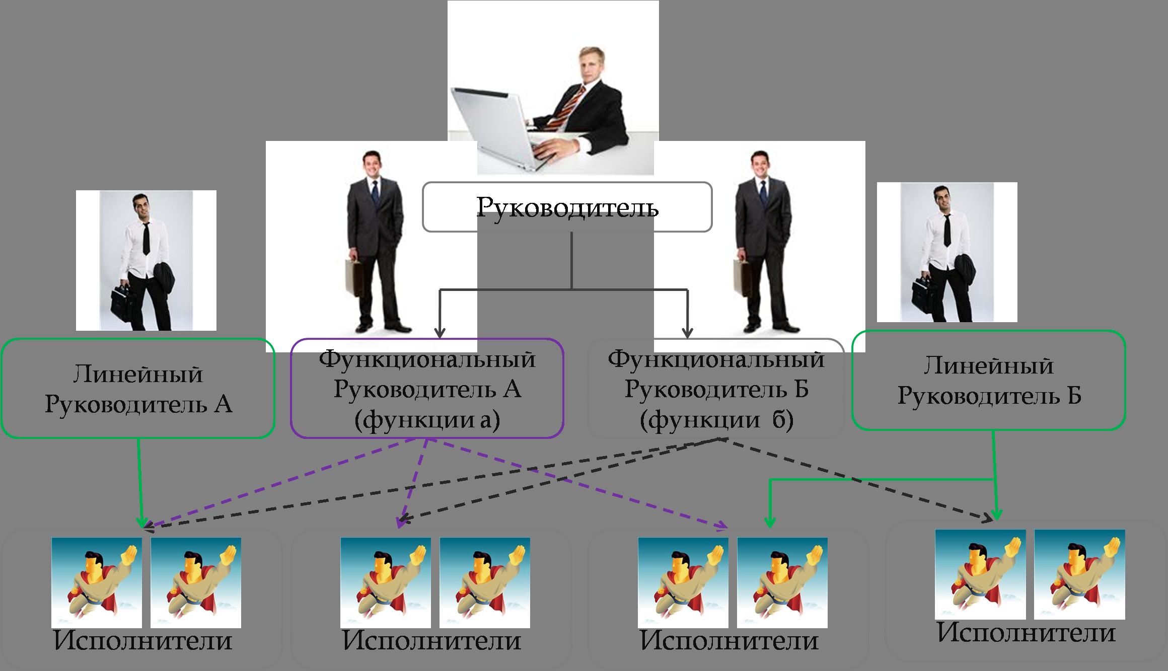 Линейно функциональная структура управления finance management  Рисунок 3